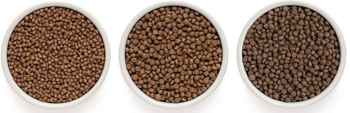 One Only гранулы корма для кошек