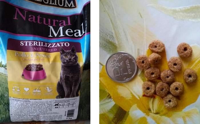 Отзыв о корме Meglium для кошек