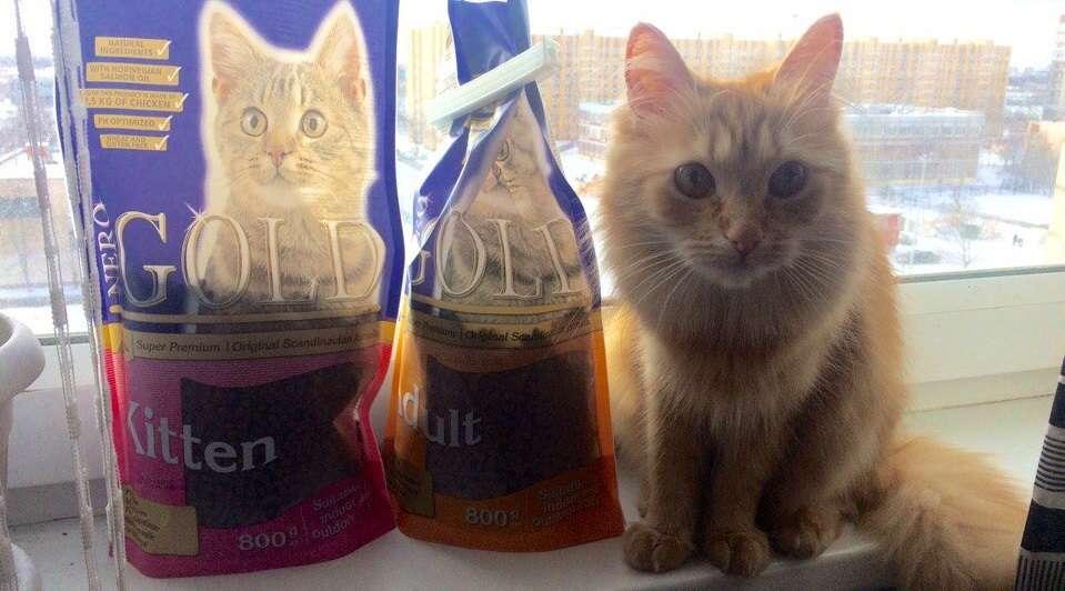 Корм Nero Gold для кошек фото покупателя