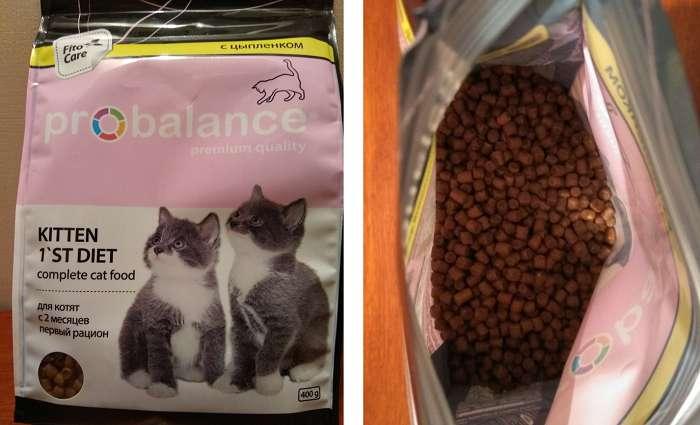 Отзывы о корме Probalance для кошек