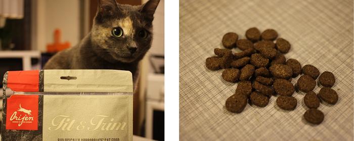 Фото отзыв корме для кошек