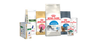 Корм Royal Canin для кошек