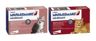 Таблетки Мильбемакс для кошек