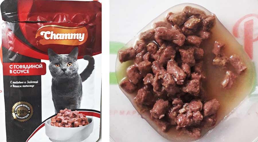 Корм Чамми для кошек отзыв