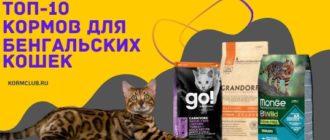 Корм для бенгальских кошек ТОП-10